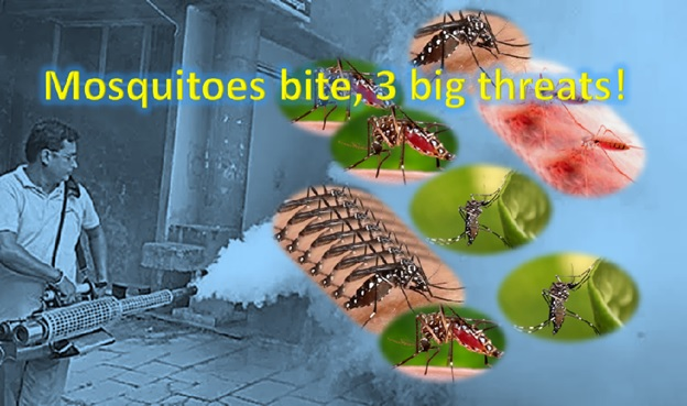 Mosquitoes bite, three big threats!