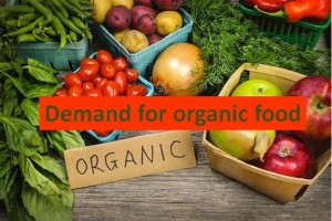 Popularity of organic food is growing