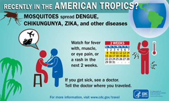 Zika, Dengue, Chikungunya – what are the differences?