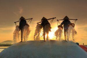Microplastic contamination in Sea salt