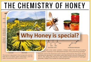 What makes honey special? Why it is in use from centuries?