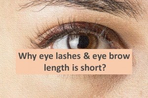 Why our eye lashes and eye brow does not grow?