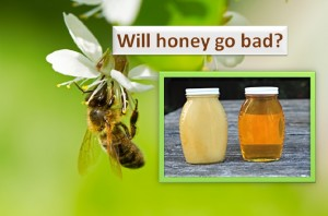 Will honey go bad?