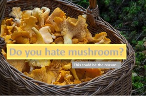 Do you hate mushroom?