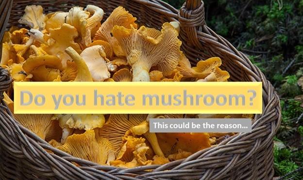 Do you hate mushroom?