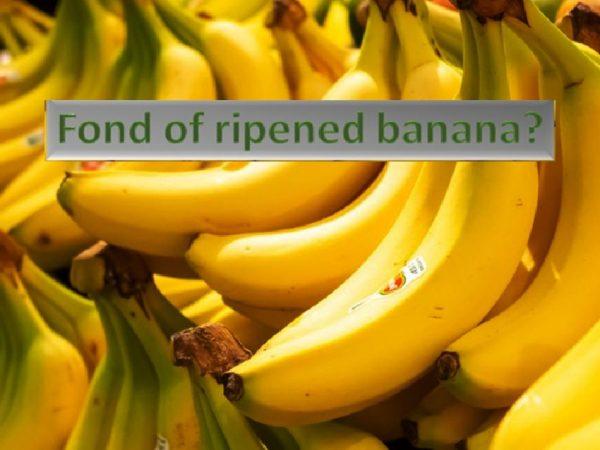 Fond of ripened banana?