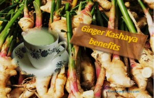 Ginger Kashaya Benefits