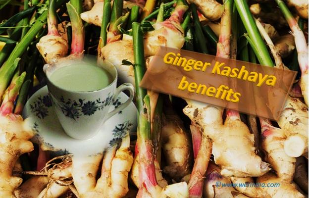 Ginger Kashaya Benefits