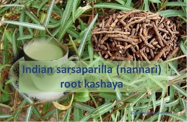 Indian Sarsaparilla Root