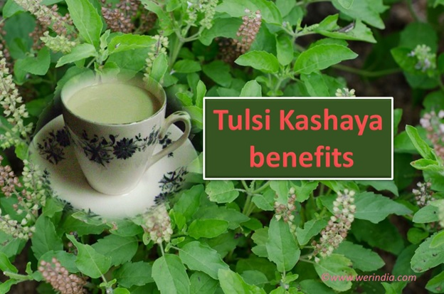 Tulsi Kashaya Benefits