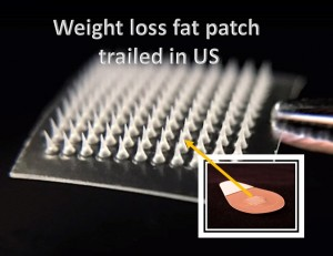 Weight loss Fat Patch is trialled in US