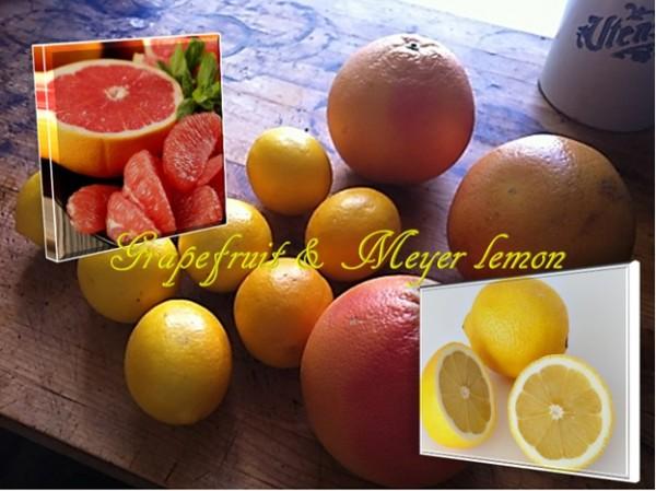 Grapefruit And Meyer Lemon