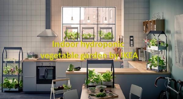 Indoor Hydroponic veg garden by IKEA