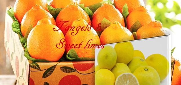 Tangelo and Sweet Limes