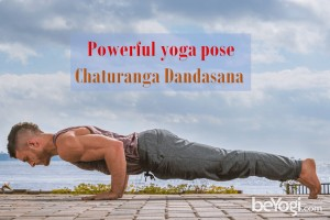 Powerful yoga pose Chaturanga Dandasana