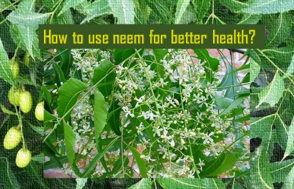 Ways to use Neem for better health