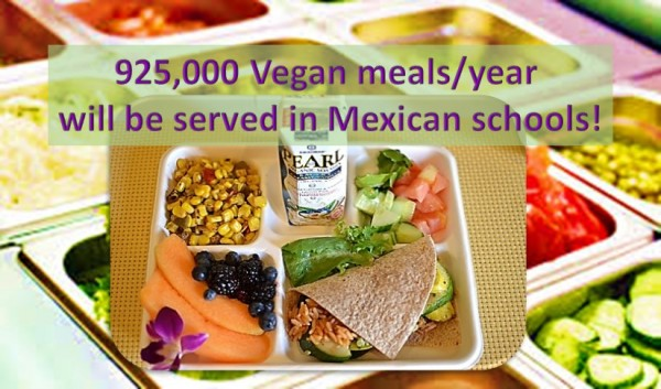 Mexico School district adopted Vegan meals