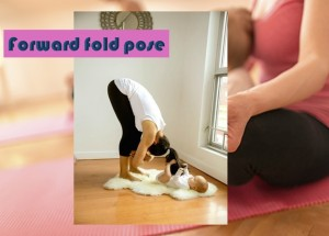 Forward Fold Pose or Padangusthasana