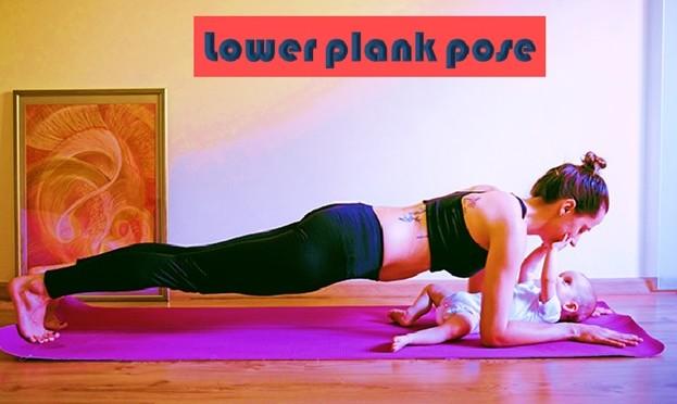 Lower Plank Pose or Chaturanga Dandasana