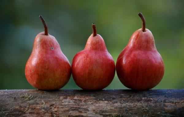 Pear allergy