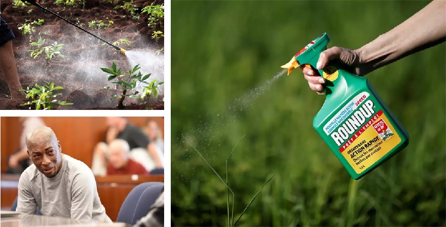 Monsanto to pay $289.2 million in Roundup cancer trial