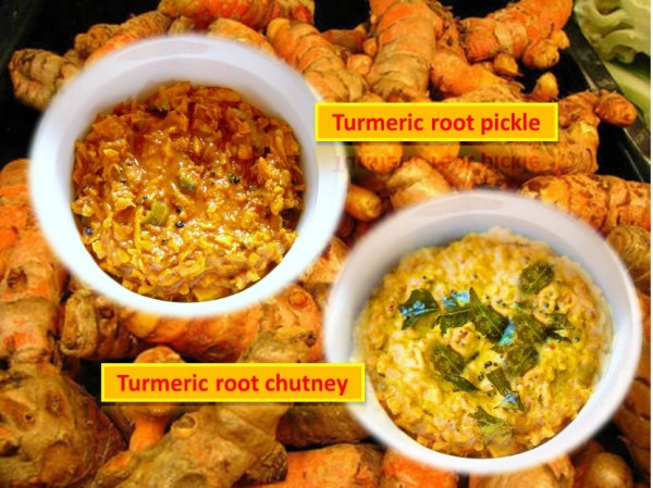 Turmeric root pickle and chutney