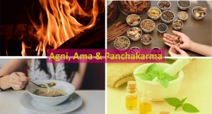 Agni, Ama and Panchakarma therapy