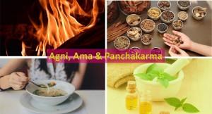 Agni, ama and panchakarma