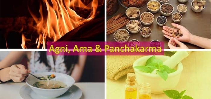 Agni, ama & Panchakarma