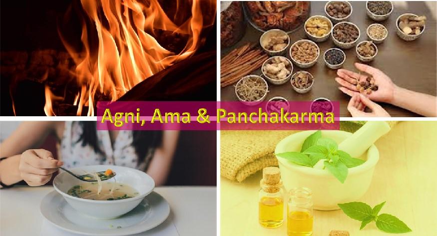 Agni, Ama and Panchakarma therapy