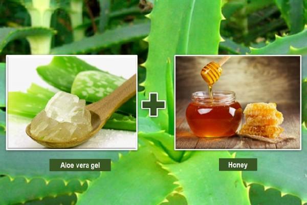 Aloe vera gel and honey for skin