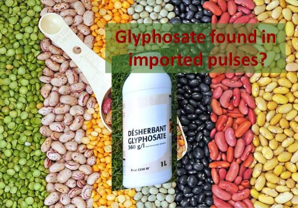 pulsesglyphosate-healthylife-werindia