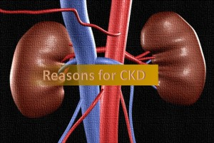 Reasons for CKD