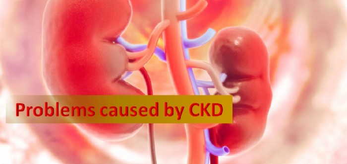 problems caused by ckd