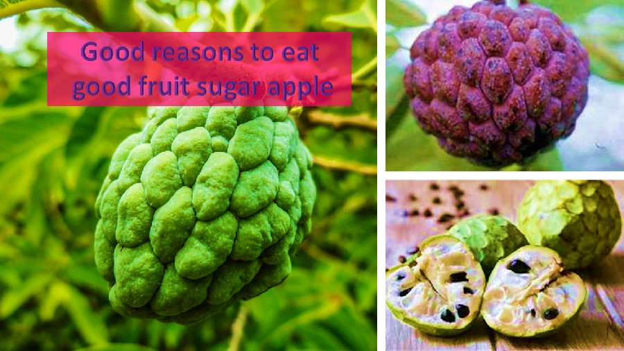 Sugar apple benefits