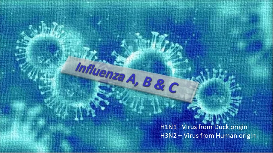 Influenza types