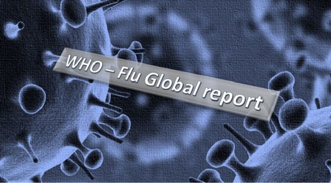 Global influenza report