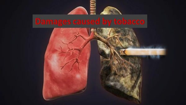 Health damages by tobacco