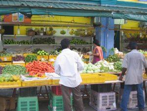 safe food practice guidelines