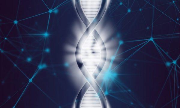 HIV1 genome elimination
