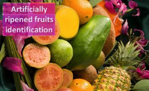 Identifying artificially ripened fruits