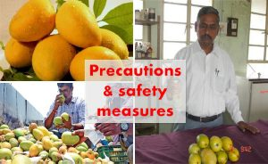 Precautions for artificially ripened fruits consumption