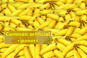 Common artificial ripeners