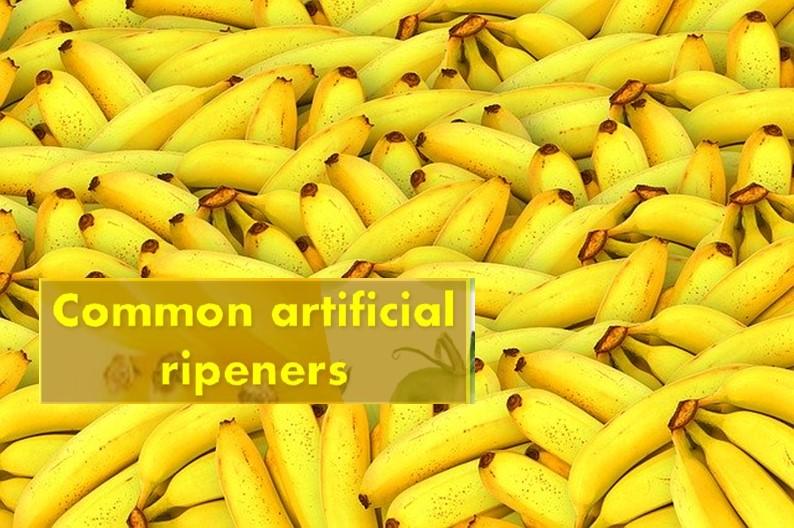 Common artificial ripeners