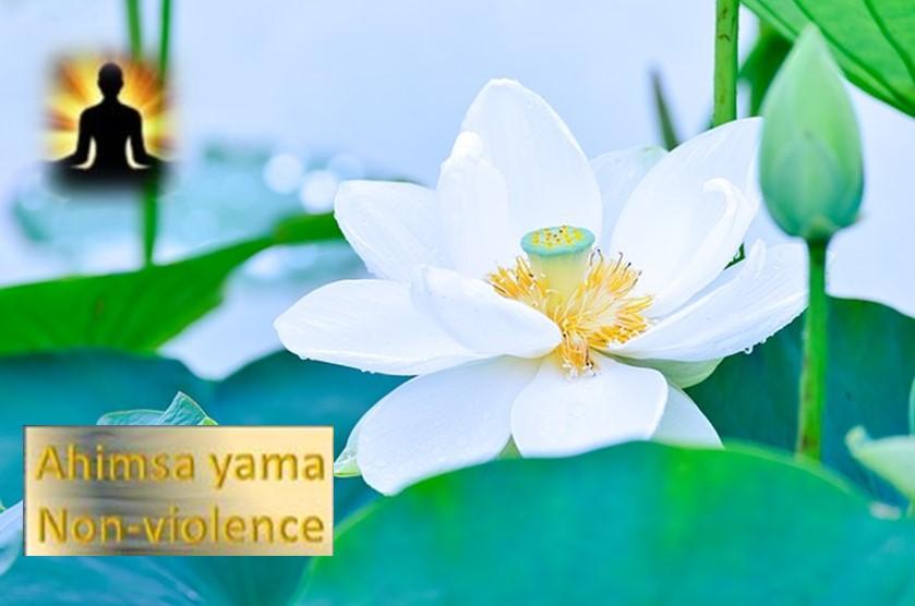 Ahimsa Yama - Non-Violence