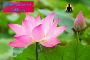 Brahmacharya yama- Celibacy