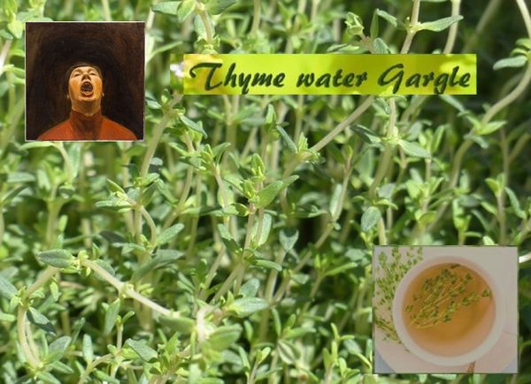 Thyme water for sore throat