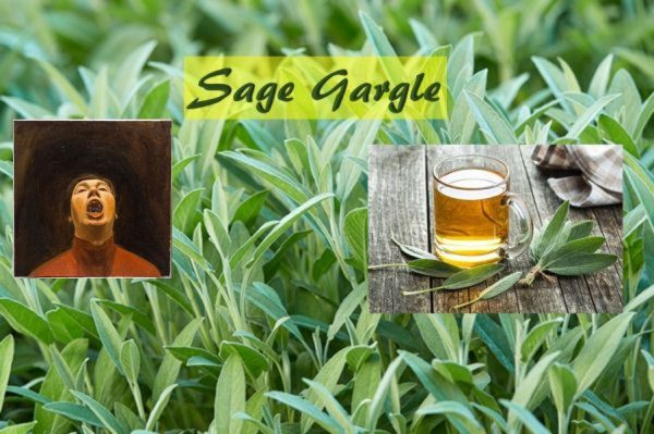 Sage water gargle
