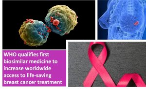 First breast cancer drug