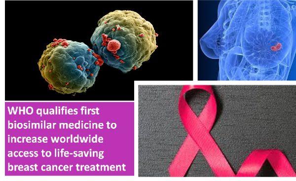 First breast cancer drug